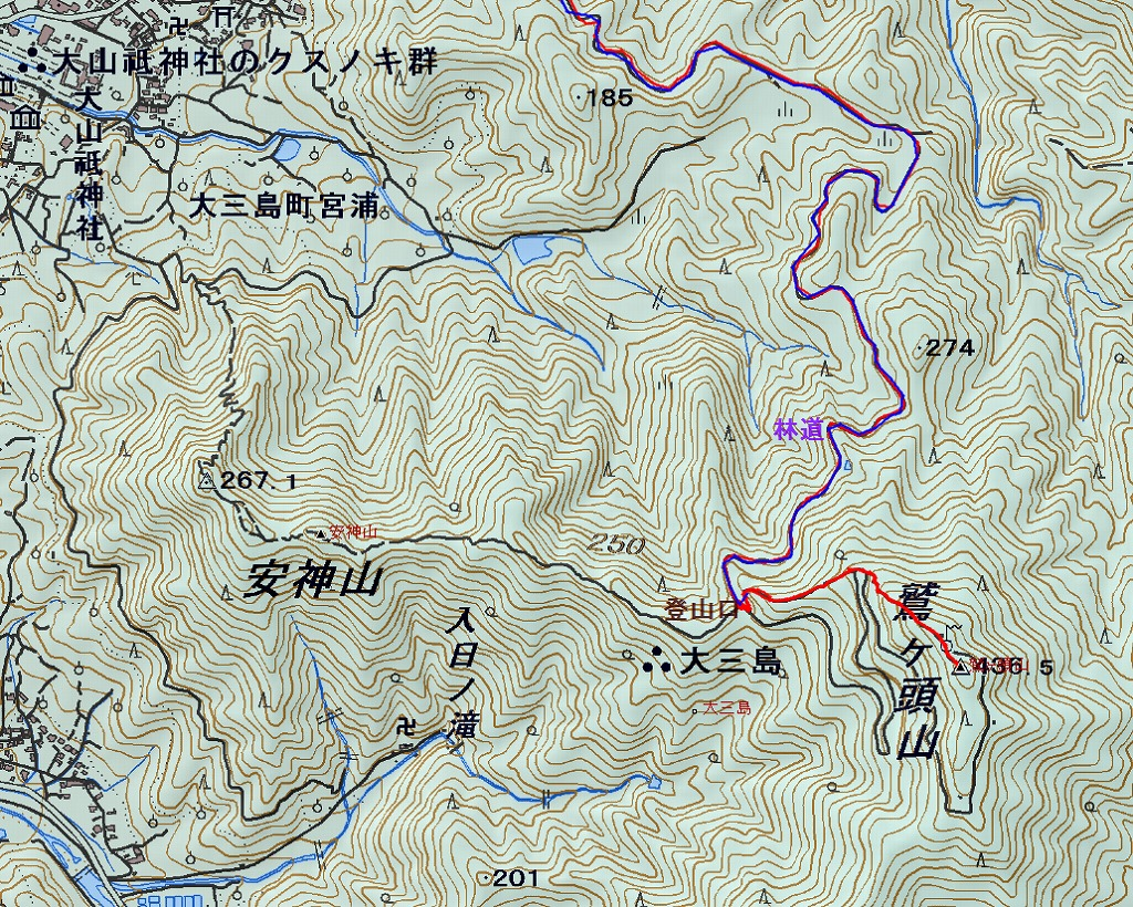s-登山道