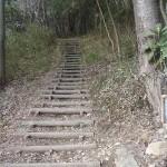 此のコースはこの階段が続く