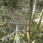 登山口・苔むした標柱