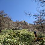 s-笹原の登りです又4