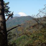 木々の間から富士山遠望・9:17