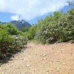 小倉山から駒ガ岳遠望